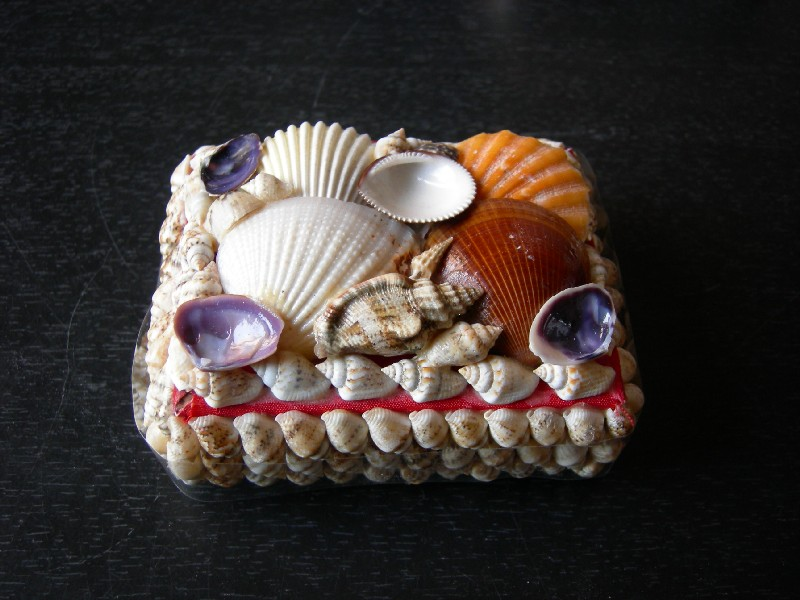 Дизайн из морских ракушек