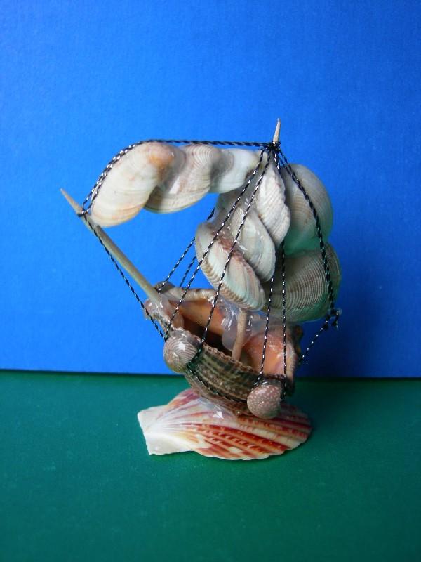 Кораблики из ракушек своими руками 39